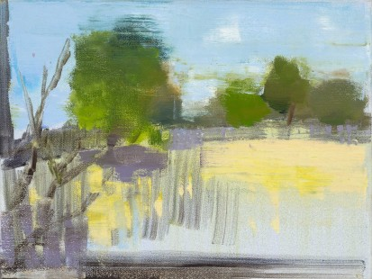 Field and Apricot Tree 2013